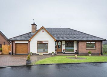 Thumbnail 4 bed bungalow for sale in Mulberry Park, Newtownabbey