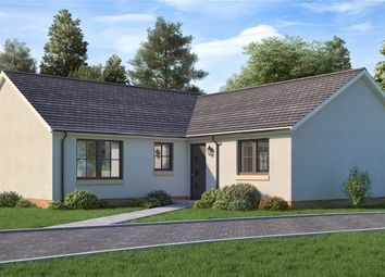 Thumbnail 3 bed detached bungalow for sale in The Parkgrove, Maple Grove, James Street, Blairgowrie, Perth And Kinross
