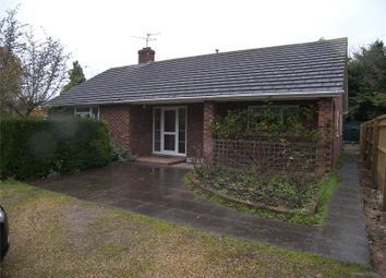 Thumbnail 2 bed detached bungalow to rent in The Street, Shurlock Row, Berkshire