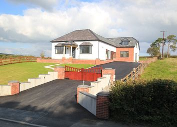 Thumbnail 4 bed detached house for sale in Capel Dewi, Carmarthen, Carmarthenshire