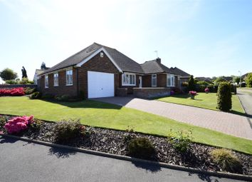 Thumbnail 3 bed detached bungalow for sale in Firle Road, Bexhill-On-Sea
