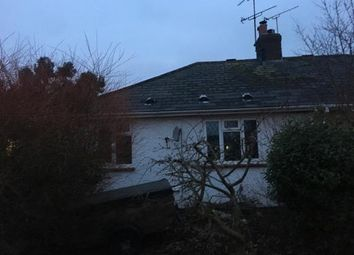 Thumbnail 2 bed bungalow for sale in Boreham, Chelmsford, Essex