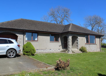 Thumbnail 3 bed bungalow to rent in Oldmeldrum AB51,