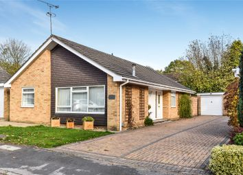 Thumbnail 3 bed bungalow for sale in Melville Avenue, Frimley, Camberley, Surrey