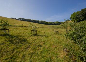 Thumbnail Land for sale in Chillington, Kingsbridge
