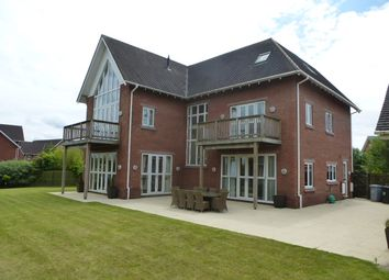 Thumbnail 6 bed detached house to rent in Freshwater Drive, Wychwood Park, Weston, Crewe, Cheshire