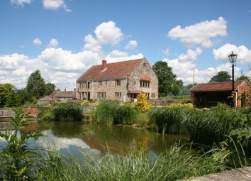 Thumbnail 4 bed property to rent in Adber, Sherborne