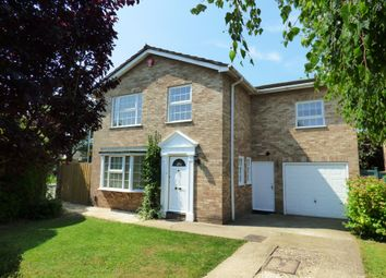 Thumbnail 4 bed detached house to rent in Greenwood Grove, Winnersh