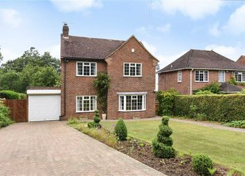 Thumbnail 4 bed detached house for sale in Westfield Lane, St Leonards-On-Sea, East Sussex
