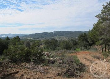 Thumbnail Land for sale in 07810 San Juan Bautista, Illes Balears, Spain