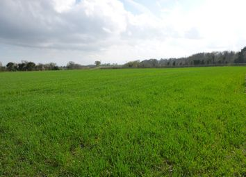 Thumbnail Land for sale in Beccles Road, Thurlton, Norwich