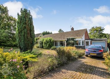 Thumbnail 3 bed detached bungalow for sale in Mill Green, Stoke Holy Cross, Norwich