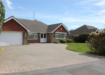 Thumbnail 2 bed detached bungalow to rent in Kewhurst Avenue, Bexhill-On-Sea