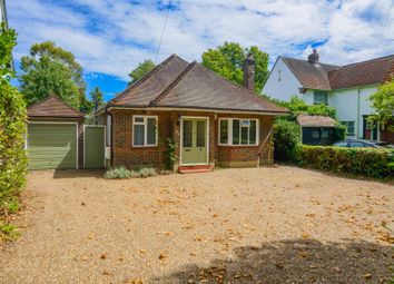 Thumbnail 3 bed detached bungalow to rent in Wensleydale Road, Hampton