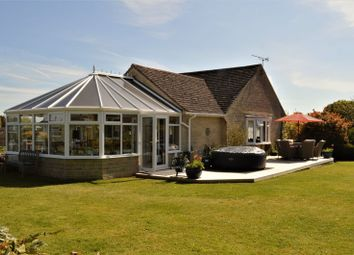 Thumbnail 3 bed detached bungalow for sale in Hambledon Close, Todber, Sturminster Newton