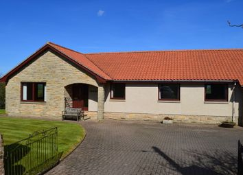 Thumbnail 4 bed detached bungalow for sale in Thornton, Foulden, Berwick-Upon-Tweed