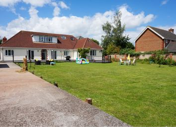 Thumbnail 5 bed detached bungalow for sale in Shoreditch Road, Taunton
