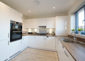 Thumbnail 3 bed terraced house for sale in Europa Way, Ipswich