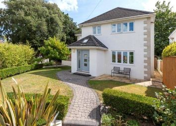 Thumbnail 4 bed detached house for sale in Birch Close, Lower Parkstone, Poole, Dorset