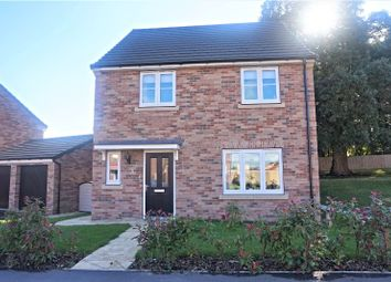 Thumbnail 3 bed detached house for sale in Holly Drive, Hessle
