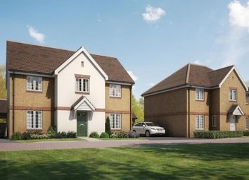 Thumbnail 4 bedroom detached house for sale in The Green, Stotfold