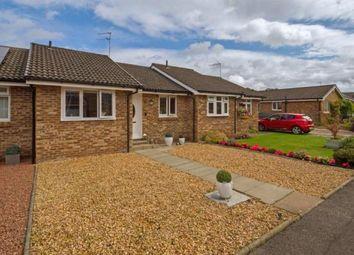 Thumbnail 2 bed bungalow for sale in Dark Brig Road, Crossford, Carluke, South Lanarkshire