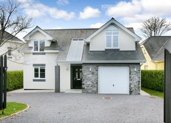 Thumbnail 4 bed detached house for sale in Higher Warborough Road, Galmpton, Nr. Brixham, Devon