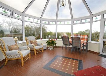 Thumbnail 4 bed detached bungalow for sale in Burry Road, St Leonards, East Sussex