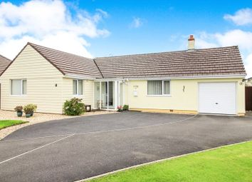 Thumbnail 3 bed bungalow for sale in The Vineyards, Holsworthy
