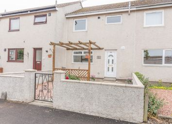 Thumbnail 3 bed terraced house to rent in Westwood Walk, Montrose