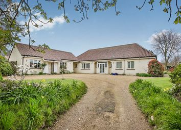 Thumbnail 6 bedroom detached bungalow for sale in Strumpshaw Road, Brundall, Norwich