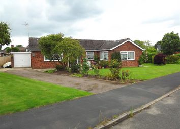Thumbnail 4 bedroom bungalow for sale in Riverview Drive, Upton, Norwich