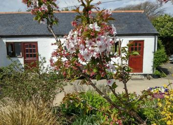 Thumbnail 1 bed cottage to rent in St. Keyne, Liskeard