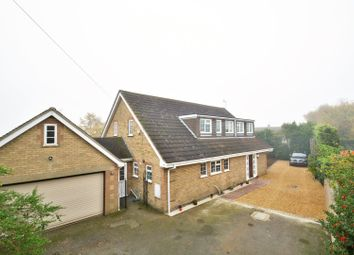 Thumbnail 4 bedroom detached house for sale in Springhead Lane, Ely