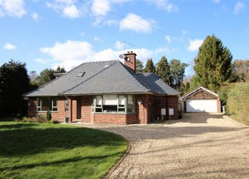 Thumbnail 4 bed detached bungalow for sale in Horncastle Road, Woodhall Spa