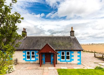 Thumbnail 2 bed cottage to rent in Invereighty, Forfar