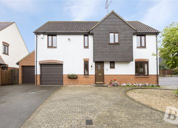 Thumbnail 4 bed detached house for sale in Millers Croft, Great Baddow, Chelmsford, Essex