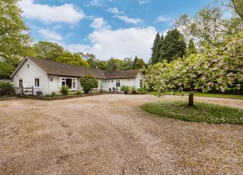 Thumbnail 5 bedroom detached bungalow for sale in Colwood Lane, Bolney, Haywards Heath