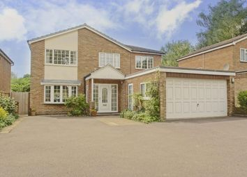 Thumbnail 7 bed property to rent in Stevenage Road, Knebworth