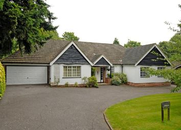 Thumbnail 3 bed detached bungalow to rent in Bridle Lane, Loudwater, Rickmansworth