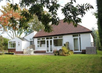 Thumbnail 3 bed bungalow to rent in Brizlincote Lane, Bretby, Burton-On-Trent