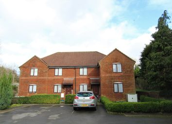 Thumbnail 1 bed detached house to rent in Station Road, Liss