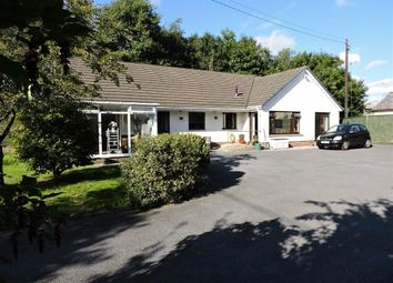 Thumbnail 4 bed detached bungalow for sale in Lloyds Terrace, Abergwili, Carmarthen
