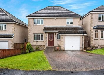 Thumbnail 4 bed detached house to rent in Leven Valley Gardens, Markinch, Glenrothes