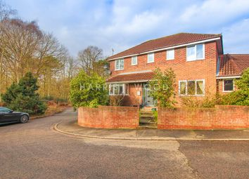 Thumbnail 4 bed detached house for sale in Pampas Close, Colchester
