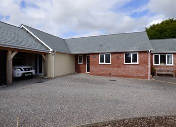 Thumbnail 4 bed bungalow for sale in The Street, Motcombe