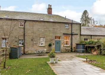Thumbnail 3 bed terraced house for sale in Newton-On-The-Moor, Morpeth, Northumberland