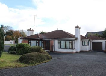 Thumbnail 3 bed bungalow for sale in Drumintee Road, Meigh, Newry