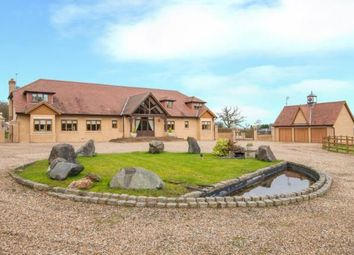Thumbnail 7 bed equestrian property for sale in White Stubbs Lane, Broxbourne, Hertfordshire