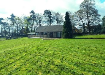 Thumbnail 3 bed bungalow to rent in The Paddocks, Ashby Road, Markfield